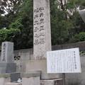 桃井春蔵直正墓(羽曳野市)