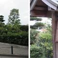 Photos: 誉田御廟山古墳(応神天皇 恵我藻伏岡陵。羽曳野市)