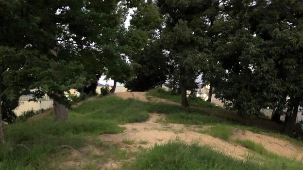 鉢塚古墳(仲哀天皇陵陪塚。藤井寺市)
