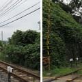 高屋城跡 不動坂口(羽曳野市)近鉄南大阪線