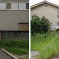 Photos: 高屋城跡(羽曳野市)