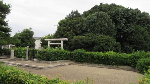 Photos: 高屋八幡山古墳(春日山田皇女陵) ・高屋城二の丸跡(羽曳野市)