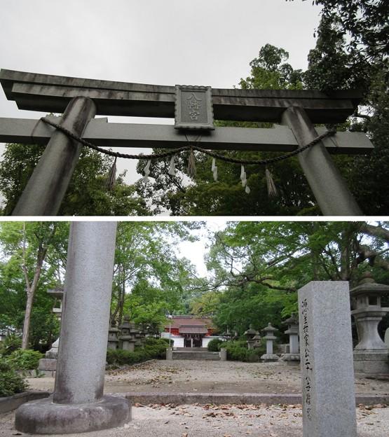 壺井八幡宮(羽曳野市)