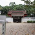 Photos: 壺井八幡宮(羽曳野市)