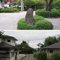 壺井八幡宮(羽曳野市)西参道
