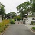 Photos: 壺井八幡宮(羽曳野市)西参道