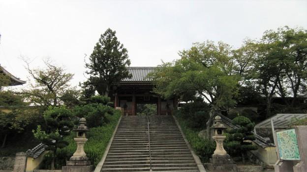 叡福寺(南河内郡太子町)南大門