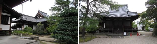 Photos: 叡福寺(南河内郡太子町)聖霊殿