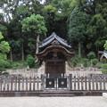 Photos: 叡福寺(南河内郡太子町)聖徳太子磯長廟