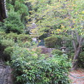 Photos: 叡福寺(南河内郡太子町)層塔