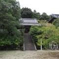 Photos: 叡福寺(南河内郡太子町)二天門廊下