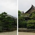 Photos: 叡福寺(南河内郡太子町)客殿
