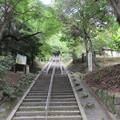 小野妹子墓所(南河内郡太子町)
