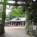 科長神社(南河内郡太子町)