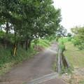 Photos: 下赤坂城(南河内郡千早赤阪村)道程