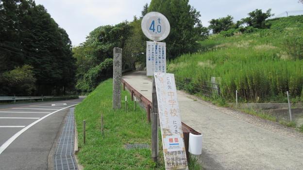 下赤坂城(南河内郡千早赤阪村)