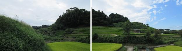 Photos: 土居城(南河内郡千早赤阪村)
