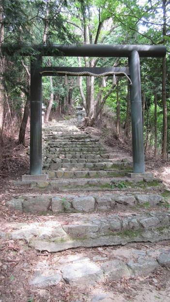 Photos: 千早城(南河内郡千早赤阪村)千早神社一の鳥居
