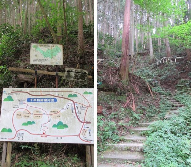 金剛山登山道(南河内郡千早赤阪村)