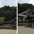 Photos: 金剛寺(河内長野市)楼門より