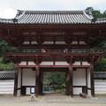 Photos: 金剛寺(河内長野市)楼門