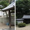 Photos: 金剛寺(河内長野市)南門・経蔵