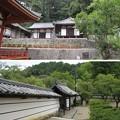 Photos: 金剛寺(河内長野市)法具蔵・護摩堂、北門