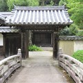 Photos: 金剛寺(河内長野市)禅之橋・無量寿院
