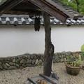 Photos: 金剛寺(河内長野市)