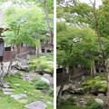 Photos: 金剛寺(河内長野市)庭園・奥殿