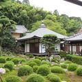 Photos: 金剛寺(河内長野市)庭園