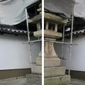 感田神社(貝塚市)裏神門狛犬