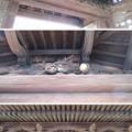 Photos: 貝塚御坊 願泉寺(貝塚市)山門