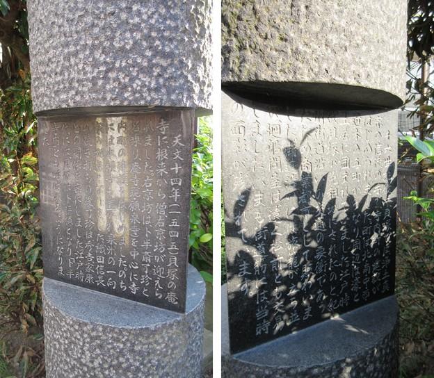 Photos: 貝塚御坊 願泉寺跡(大阪府貝塚市)貝塚御坊寺内町