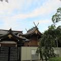 Photos: 岸城神社(岸和田市)本殿