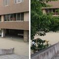 Photos: 岸和田城(岸和田市)二郭・外堀