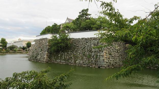 Photos: 岸和田城(岸和田市)本丸内堀