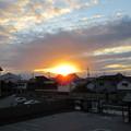Photos: 岸和田城(岸和田市)二郭より