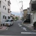 Photos: 岸和田古城(岸和田市)