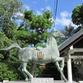 大鳥大社(堺市西区)神馬