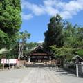 Photos: 大鳥大社(堺市西区)拝殿