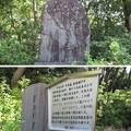大鳥大社(堺市西区)清盛公歌碑