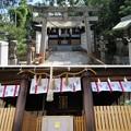 Photos: 大鳥大社(堺市西区)大鳥美波比神社