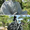 Photos: 南宗寺(堺市堺区)三好長慶像