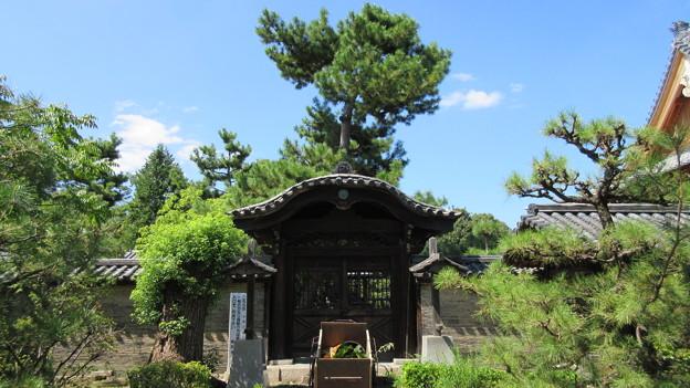 南宗寺(堺市堺区)唐門