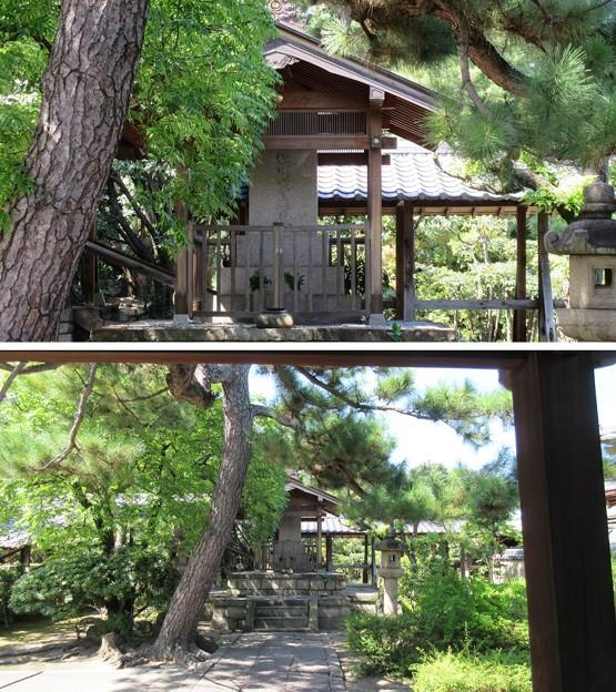 南宗寺(堺市堺区)徳川家康墓