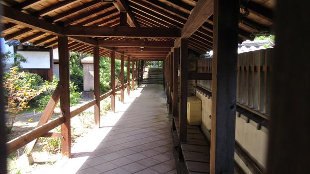 南宗寺(堺市堺区)仏殿前回廊