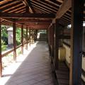 Photos: 南宗寺(堺市堺区)仏殿前回廊