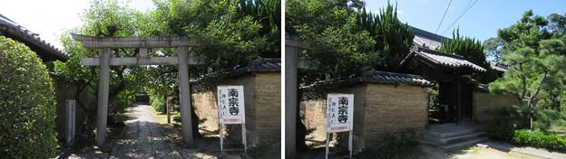 南宗寺(堺市堺区)
