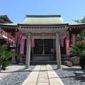 Photos: 妙国寺(堺市堺区)宇賀徳正龍神